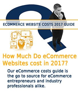 image of entrepreneur contemplating eCommerce website cost