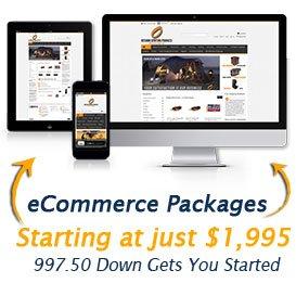 image of ecommerce website starter package